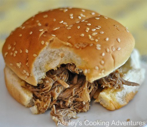 carolina pulled pork bbq