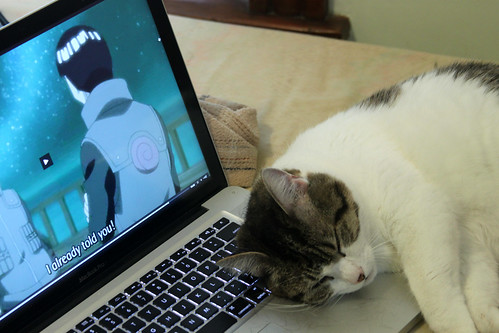 I already told you, no napping on my laptop