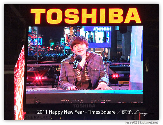 2011 Happy New Year - Times Square 15