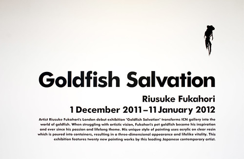 Exhibition Introduction, Riusuke Fukahori - Goldfish Salvation