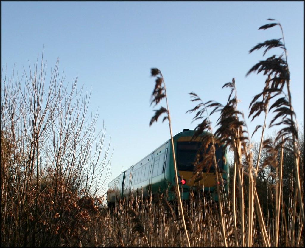 Marshlink Line A train on the Marshlink line (Hastings to Ashford).