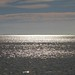 Morning Sun on Aransas Bay