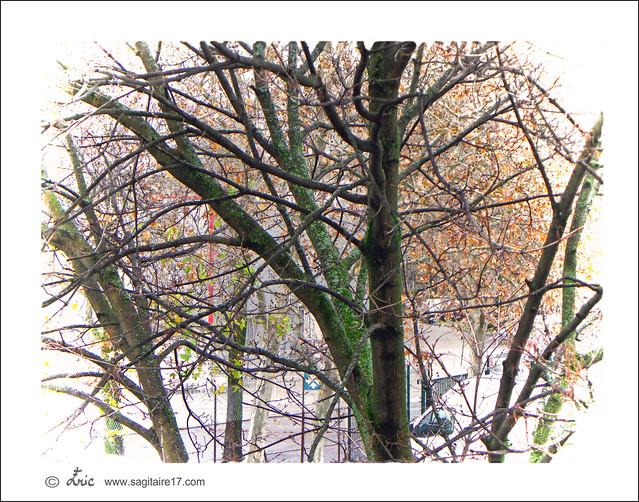 11-12.033 -cadre-Eric-www.sagitaire17.com - copyright