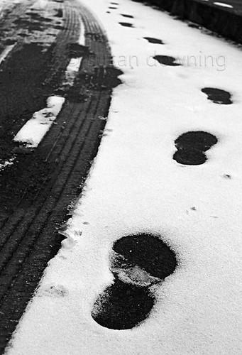 Tracks BW {1/52}
