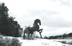 Iron Horse 1