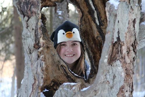 Penguin Sara
