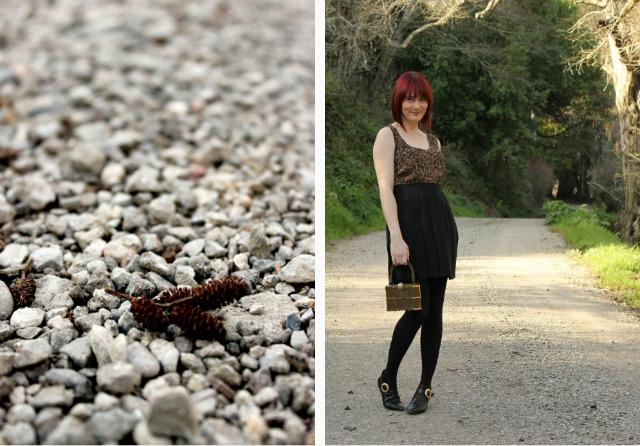 pine cone close up collage