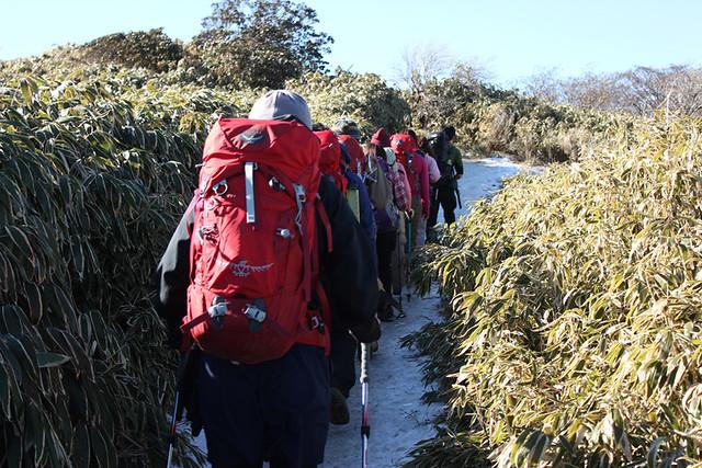 竜ヶ岳雪道
