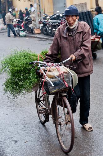 Hanoi 23