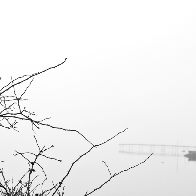 svartvit brygga