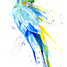 Parrot V - Catablu Macaw by Amy Holliday