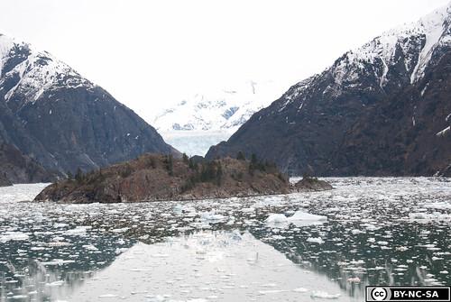 20110505-Alaska2011-D2-DSC_5239.jpg