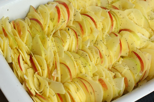 Kartoffel-Apfel-Gratin