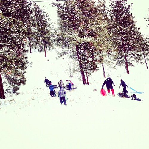 The birthday/sledding party is in full effect.