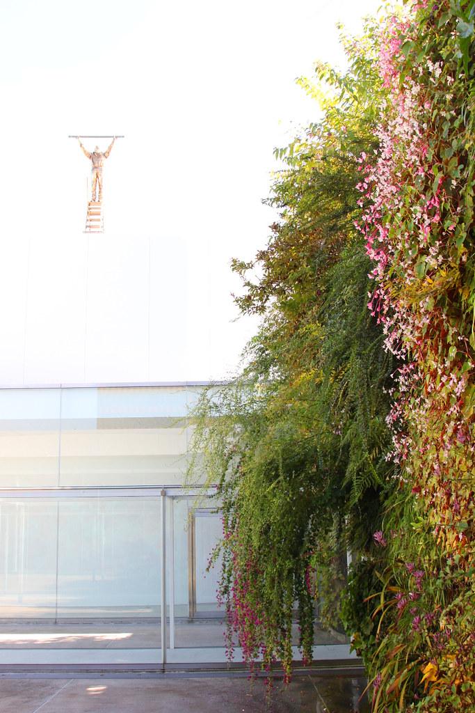 21st Century Museum of Contemporary Art, Kanazawa (21)