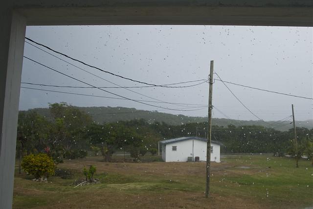 big fat rain