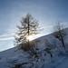 Un temps... (Val d'Ayas, Valle d'Aosta - Vallée d'Aoste)