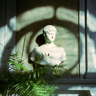 Light on a bust