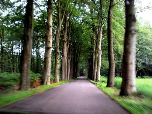 Elspeet, the Netherlands