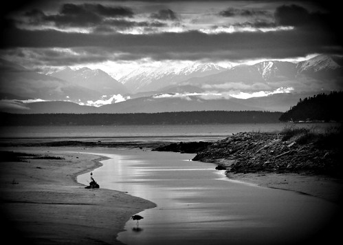 01-31-12 Low Clouds and Low Tide by roswellsgirl