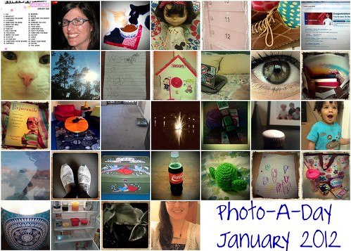 Photo-A-Day January 2012