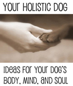 Your Holistic Dog Canine Massage