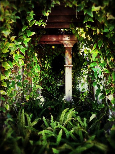 234/365- Secret garden by elineart