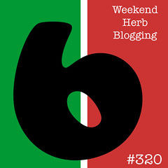 Announcing: Weekend Herb Blogging is hosted here this week!