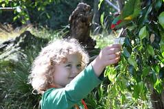 Taki feeding a parrot