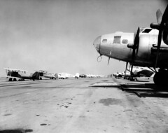 Planes tied down at Orange County Airport, circa 1950s