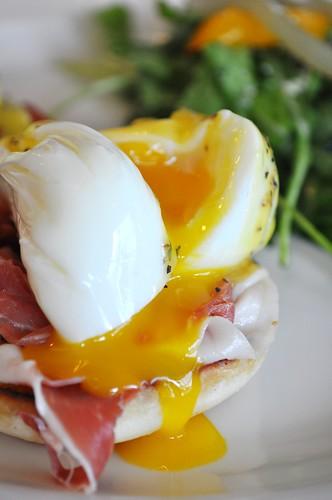sliced egg benny