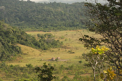 Guyana-0846