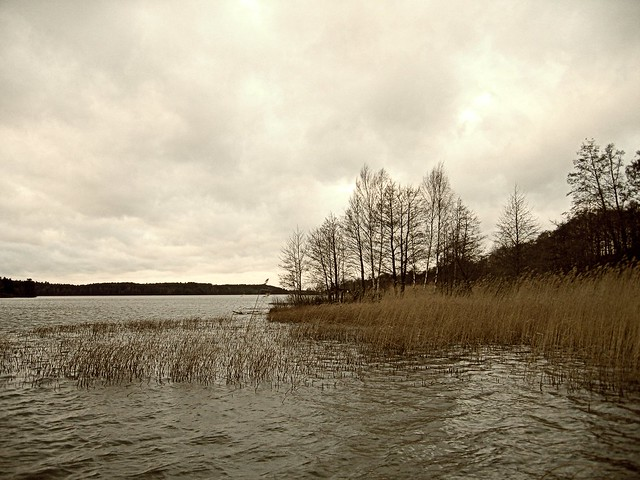 Last day of autumn in Viking Land -#2