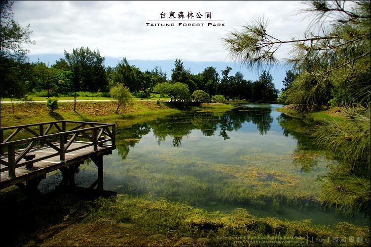 旅行︱台東森林公園~發現黑森林中的湖泊寶石