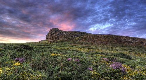 pictures sunset cloud flower color colour green art colors rock clouds landscape nikon rocks colours picture award devon moor magical dartmoor roan haytor manion southdevon d5000 haytorvale haytorrocks viewbug haytordartmoor nikond5000 dartmoorlandscapes bestdartmoorphotography bestdartmoorlandscapes dartmoorphotography bestdartmoorimages dartmoorflower roanmanion roanmanionphotography roanmanionimages
