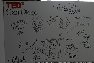graphic recording by Jeannel King at TEDxSanDiego – _MG_3736