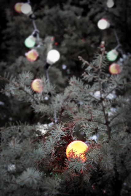 Christkindlmarkt Tree