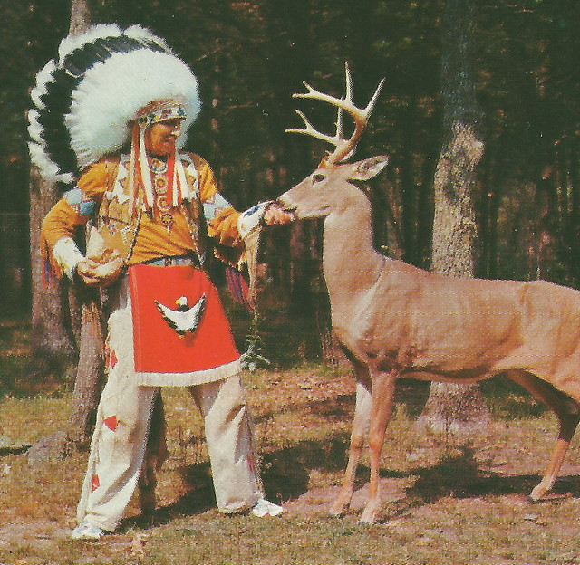 the history of west michigan indian News native american history the saginaw chippewa indian tribe of michigan established the potawatomi and chippewa people of west michigan form the.