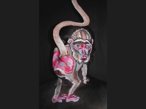 Baboon! James Kuhn. Face Paint in Motion,