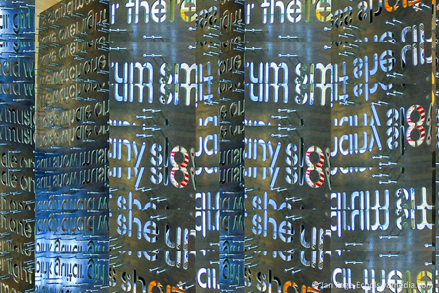 Word Wall - Decim8 the she