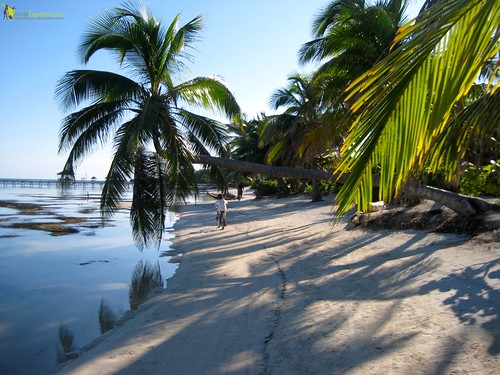 biking ambergris caye in belize