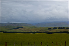 Landscape along the Napier-Taihape Road