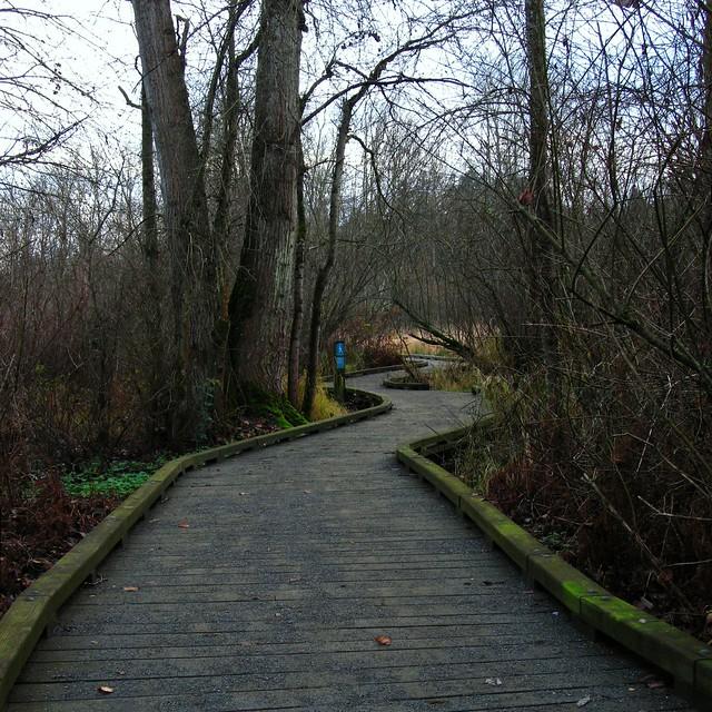 Boardwalk in Mercer Slough Nature Park