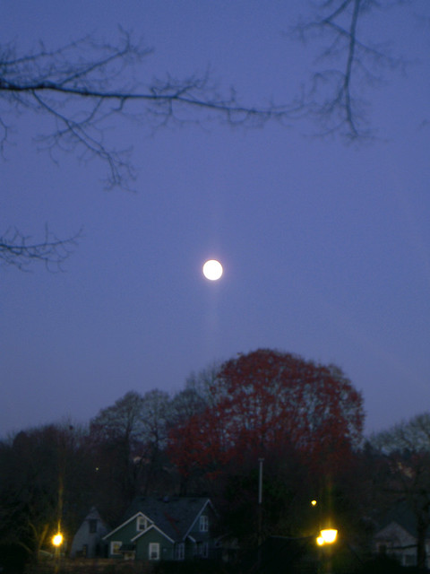 Late Fall Full Moon