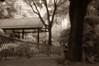 infrared pinhole DSC_8488x