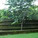 Crementation Stupa