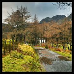 Road near Llyn Crafnant, Snowdonia