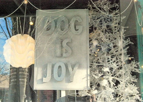 Dog Is Joy