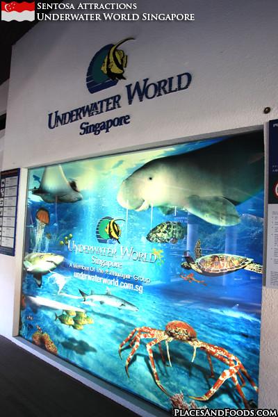 sentosa-underwater-world-14