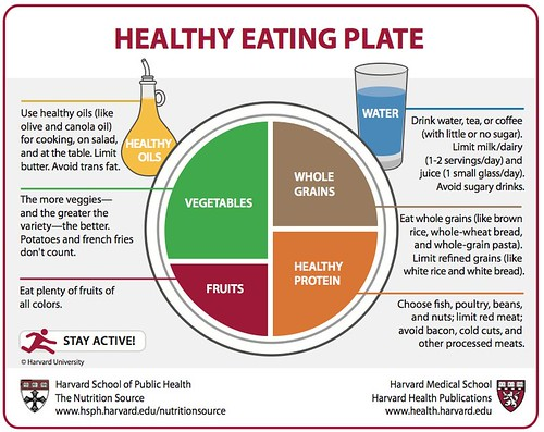 Harvard School of Public Health: Healthy Eating Plate by stevegarfield